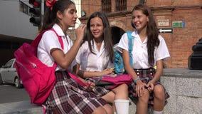 Amis d'ado de filles d'école Image stock