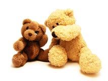 Amis d'ours de nounours Photographie stock libre de droits