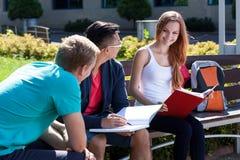 Amis d'université étudiant ensemble dehors Photo libre de droits