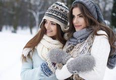 Amis dans des vêtements d'hiver Image stock