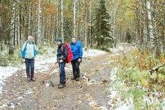 Amis dans la forêt d'automne Image stock