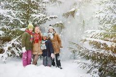 Amis dans la forêt d'hiver Image stock