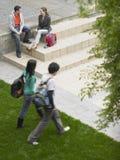 Amis dans la pelouse de l'université Image stock