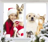 Amis dans le costume de Noël Images stock
