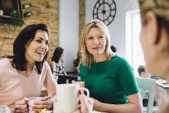 Amis dans un café Image stock