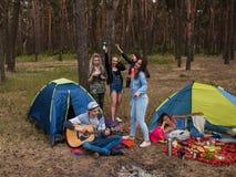Amis dansant avec une guitare Repos de touristes sur la nature Image stock