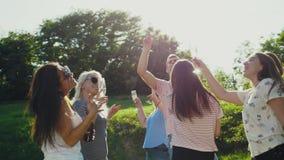 Amis dansant et ayant l'amusement en nature banque de vidéos
