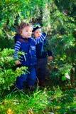Amis de bébé dans les bois Photo libre de droits