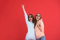 Amis de dames heureux se tenant d'isolement Photographie stock libre de droits