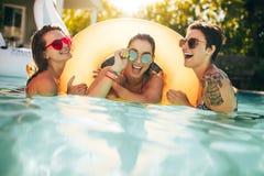 Amis de femmes appréciant ensemble dans la piscine Images stock