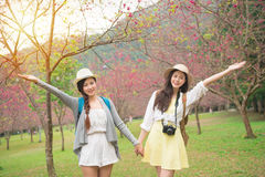 Amis de femmes heureux au Japon dans le sanctuaire de Sakura Image stock