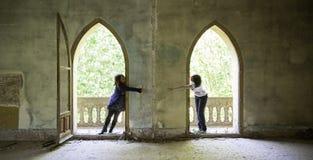 Amis de fenêtre Image libre de droits