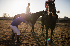 Amis de formation d'entraîneur chez le cheval d'équitation à la grange Image libre de droits