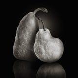Amis de fruit de poire sur le noir Photographie stock