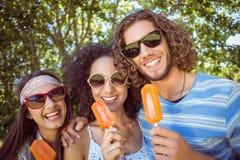 Amis de hippie appréciant des esquimaux Images stock
