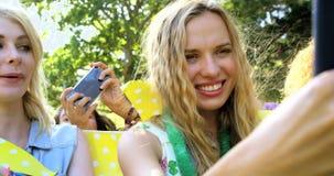 Amis de hippie prenant un selfie clips vidéos