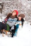 Amis de l'hiver Photo stock