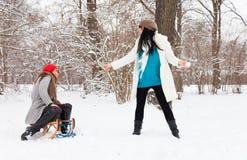 Amis de l'hiver Images libres de droits