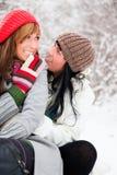 Amis de l'hiver Photographie stock libre de droits