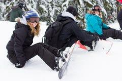 Amis de l'hiver Photo libre de droits