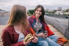 Amis de réunion avec la nourriture industrielle à emporter sur le toit Photographie stock libre de droits