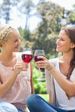 Amis de sourire faisant tinter leurs glaces de vin Photo libre de droits