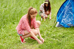 Amis de sourire installant la tente dehors Photographie stock