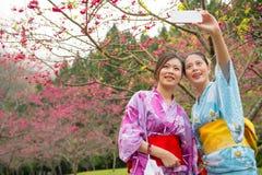 Amis de touristes prenant la photo avec le smartphone Photos stock