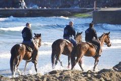 Amis du cheval Photo libre de droits