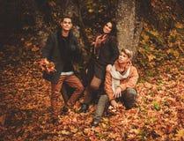 Amis en parc d'automne Photos libres de droits