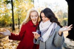 Amis euphoriques observant des vidéos sur un smartphone et se dirigeant à l'écran étonné en parc d'automne Photos stock