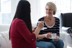 Amis féminins agissant l'un sur l'autre les uns avec les autres tout en ayant le thé Image stock