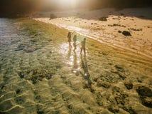 Amis féminins appréciant des vacances d'été sur la plage tropicale Photo stock