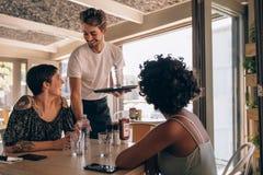 Amis féminins au restaurant Image libre de droits