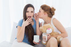 Amis féminins avec des tasses de café bavardant dans le lit Images libres de droits