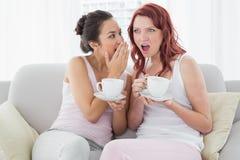 Amis féminins avec des tasses de café bavardant dans le salon Photographie stock