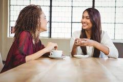 Amis féminins ayant le café Photographie stock
