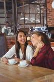 Amis féminins ayant le café Photos stock