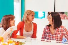 Amis féminins ayant une vie sociale à la maison Images libres de droits
