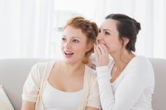 Amis féminins bavardant comme ils regardent loin dans le salon Photo libre de droits