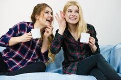 Amis féminins bavardant ensemble Photographie stock libre de droits