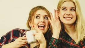 Amis féminins bavardant ensemble Image stock