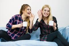 Amis féminins bavardant ensemble Photographie stock