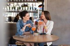 Amis féminins causant et buvant Image stock