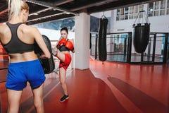 Amis féminins de boxeur ayant la formation Photo stock