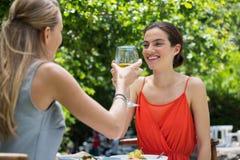 Amis féminins de sourire grillant des verres de vin au restaurant Images libres de droits