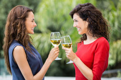 Amis féminins de sourire grillant le vin blanc Images libres de droits