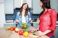 Amis féminins de sourire préparant la salade Photo libre de droits