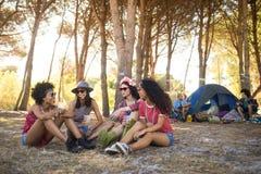 Amis féminins de sourire s'asseyant ensemble au terrain de camping Photographie stock libre de droits