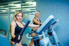 Amis féminins du positif deux s'exerçant sur les entraîneurs elliptiques dans le centre de fitness, concept de mode de vie cardio Image libre de droits